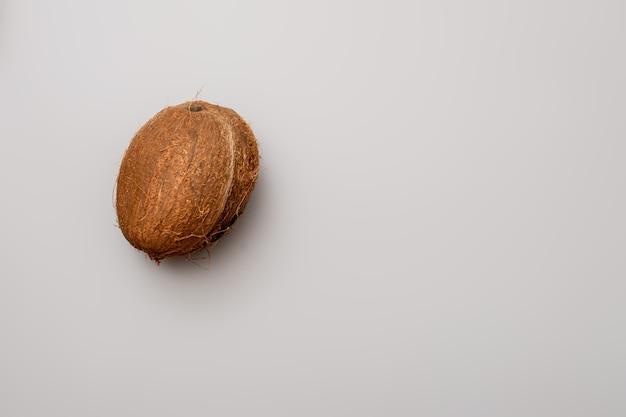 회색 배경에 코코넛 1개