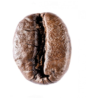 One coffee bean single  object isolated on white background