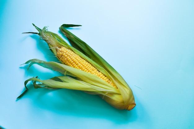 青い背景の上の1つのトウモロコシ最小限の食品コンセプト上面図