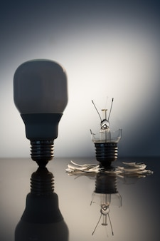 One economic bulb standing next to a broken clear light bulb