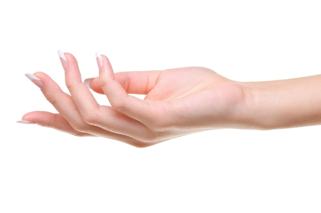 白で隔離される美容フレンチマニキュアで1つのエレガントな女性の手