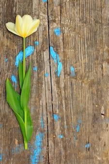 Один цветок на деревянной доске