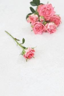 One flowers and bouquet of pink roses