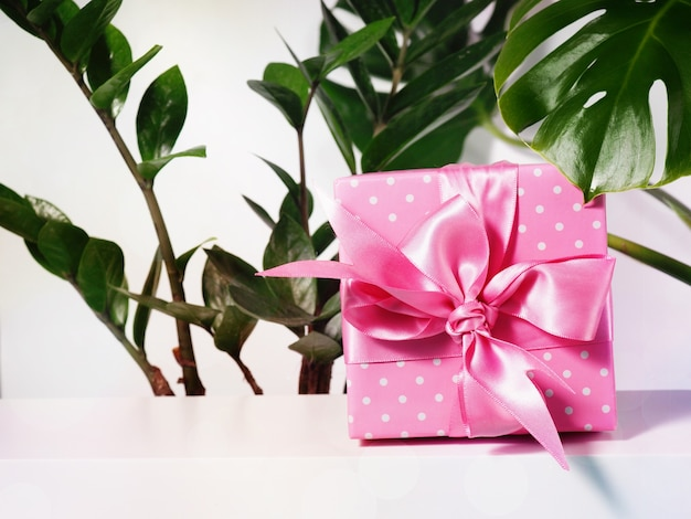 Одна подарочная коробка с розовой лентой рядом с листьями комнатного растения.