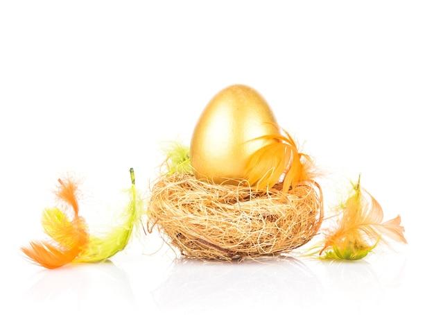 Одно золотое яйцо в гнезде, изолированном на белом