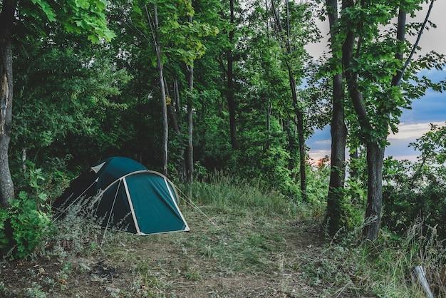 夏の森にある緑のテント。