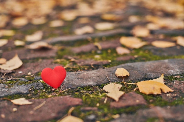 One heart on autumn path. unrequited, one-sided love or loneliness concept.