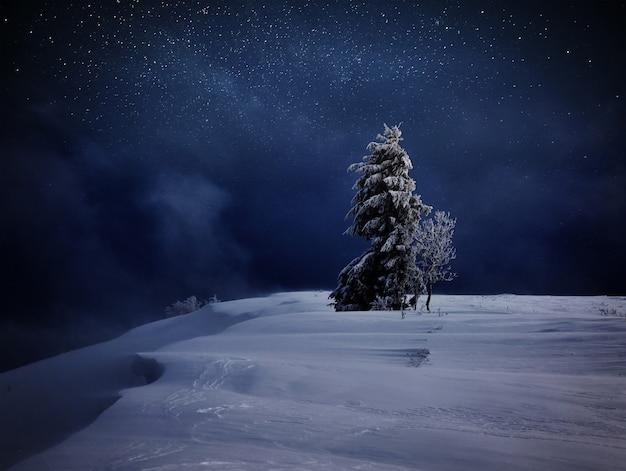 魔法のような冬の雪に覆われた木が1本残っています。冬の風景。星と星雲と銀河のある活気に満ちた夜空。深天の天体写真。