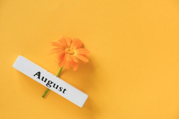Один оранжевый цветок календулы и календарный летний месяц август на желтом фоне. вид сверху копирование пространства плоская планировка минимальный стиль. концепция здравствуйте, август шаблон для вашего дизайна, поздравительной открытки.