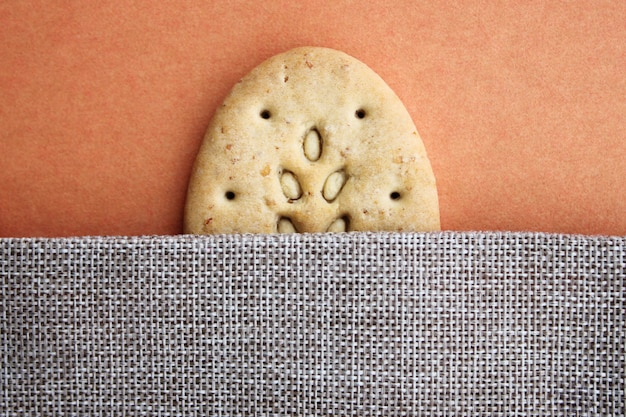One oval multigrain biscuits on canvas closeup