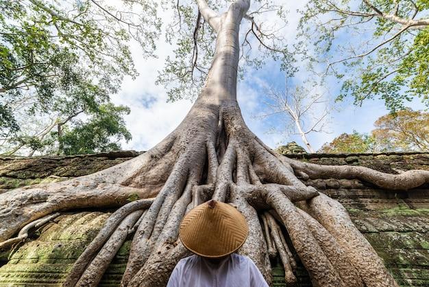 タ・プロームの有名なジャングルの木の根を見ている一人