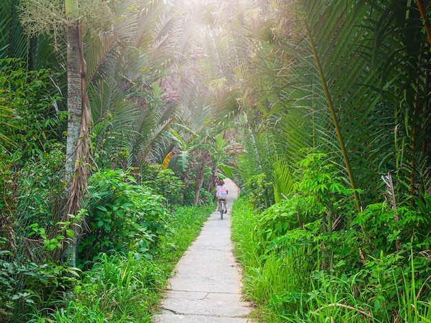 One person riding bicycle in the mekong delta region, south vietnam. woman cycling on small trail among lush green coconut palm tree woodland and tropical fruit orchards. rear view.