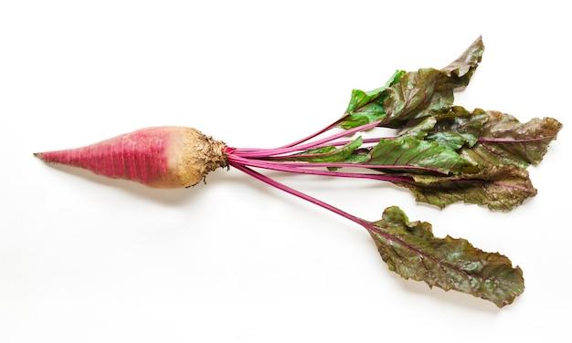 分離した葉を持つ1つの熟した新鮮なビート。理想的な野菜、健康的な自然有機食品のクローズアップ画像