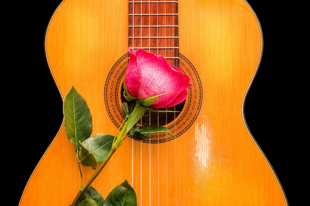 One rose on the old guitar