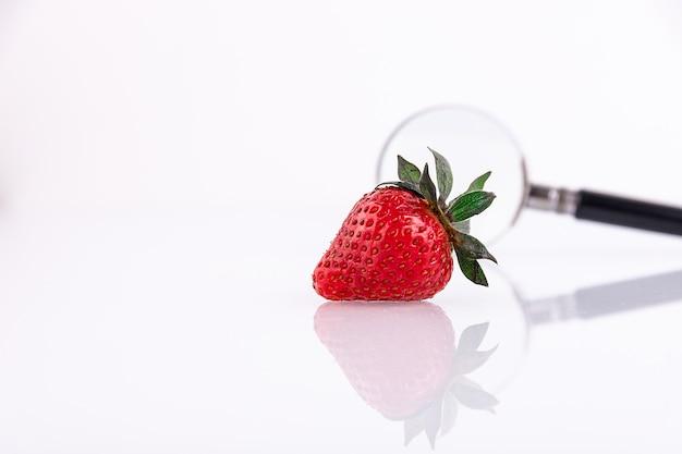 虫眼鏡で白い背景に1つの新鮮なイチゴ。健康食品と環境にやさしい製品のコンセプト。