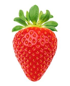 One strawberry isolated on white background