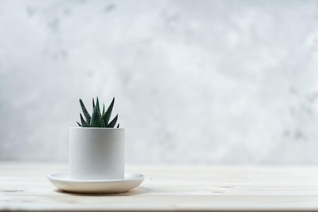 木製のテーブルの上のコンクリートの鍋に多肉植物とサボテン1つ