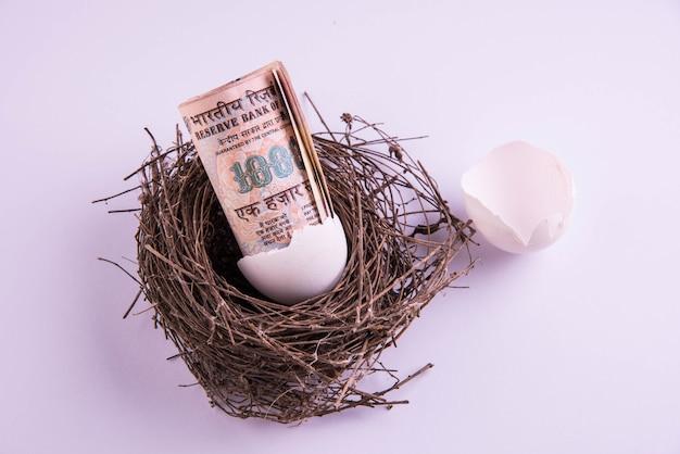 白い背景に対して巣の壊れた卵から出てくる1000インドルピー紙幣