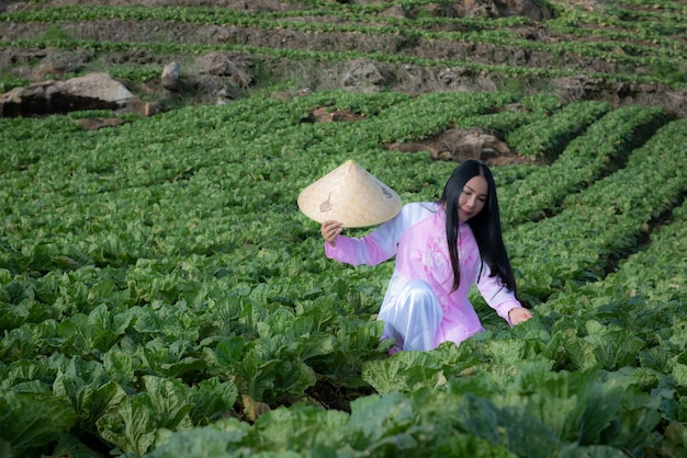 한 베트남 남성이 관리하고 있습니다. 그의 야채와 함께. (베트남 산 위의 농업)