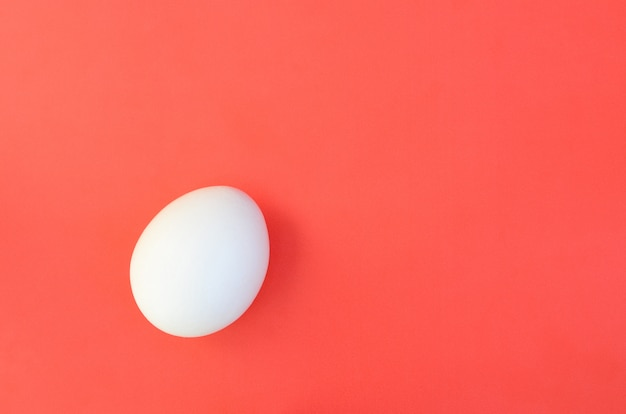 One white egg on a bright red background