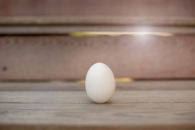 One white egg lies on wood