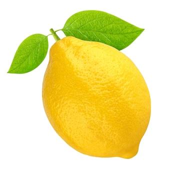 One whole lemon isolated on white