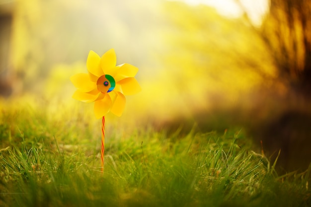 One yellow pinwheel against nature background in sunny summer day