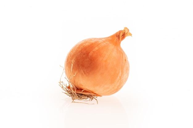 Onion orange isolated on white