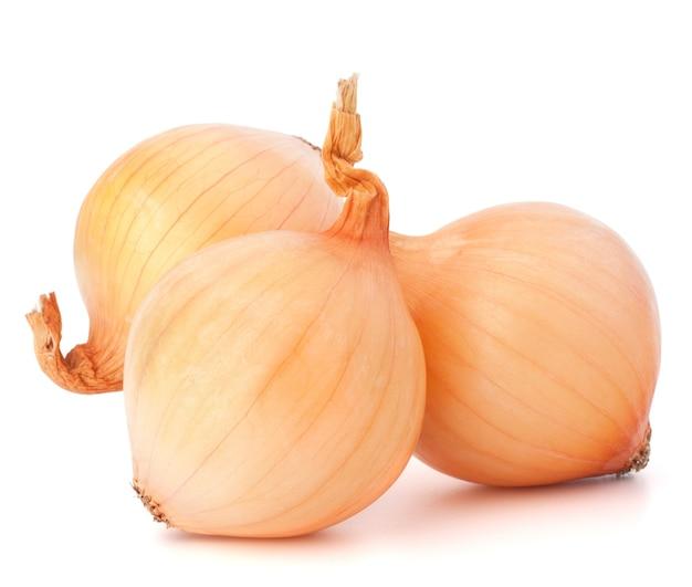 白い背景のカットアウトにタマネギ野菜の球根