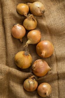 Onions on blanket