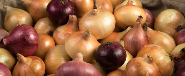 Onions of different varieties