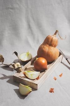 Cipolle e arrangiamento di zucca ad alto angolo