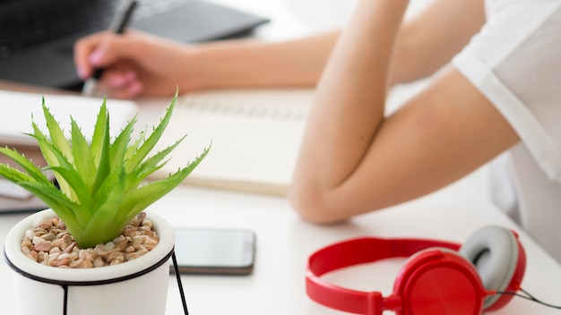Online classes with student and home plant