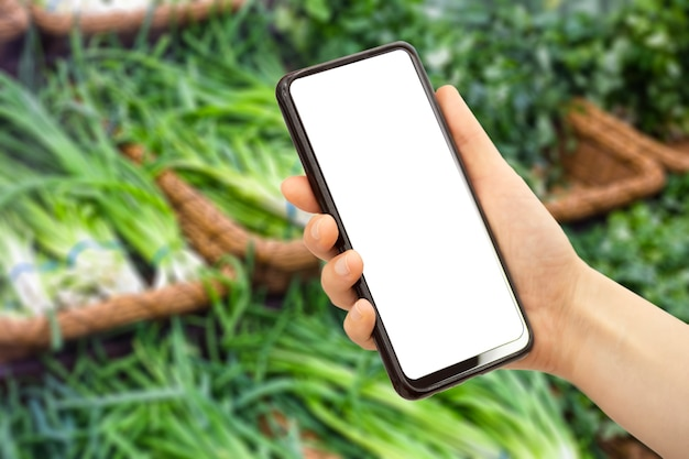 携帯電話のオンライン食料品配達アプリスマートフォンの食品市場サービス