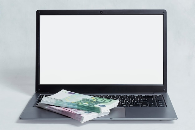 Online work and investment concept. mockup laptop with a bundle of euro bills on a white background.