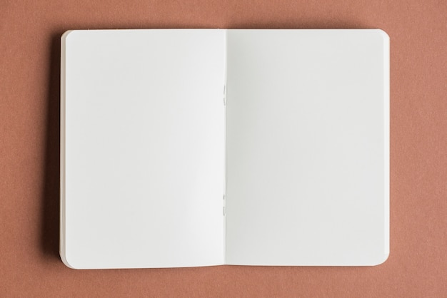 Open blank book on colored background