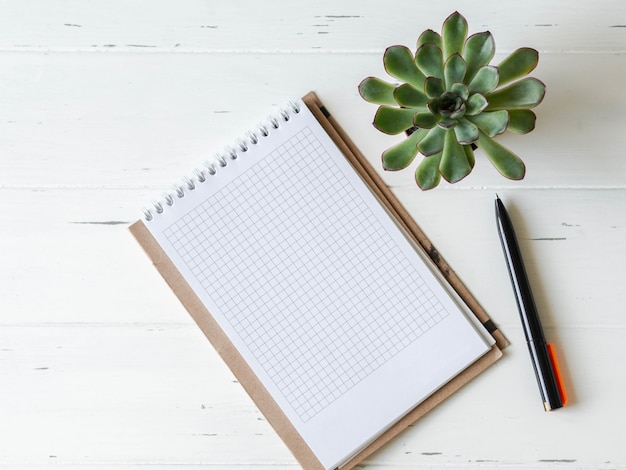 Open blank checked notebook, black pen and succulent on  white wooden background.