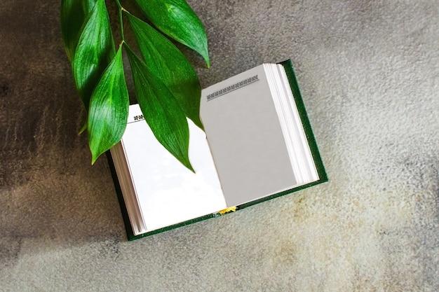 灰色のコンクリートの表面に緑の植物の本と小枝を開きます。詩と文学の日のレイアウト