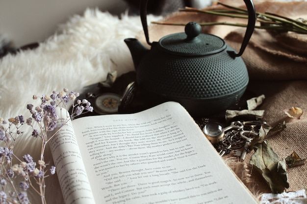 Открытая книга и чайник