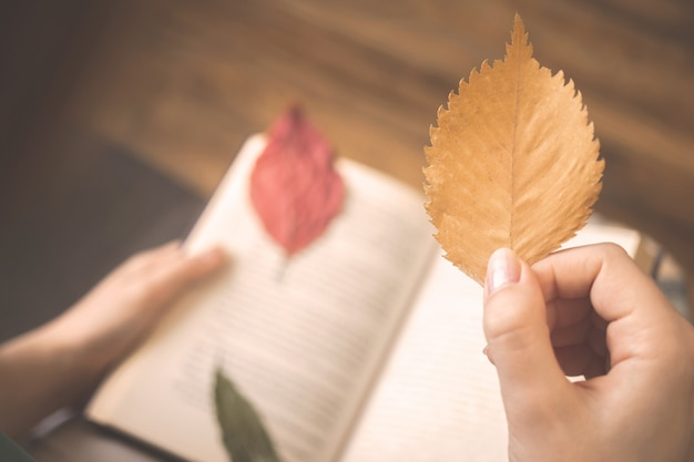 Open book and autumn leaf in woman hand. cozy autumn background photo indoors