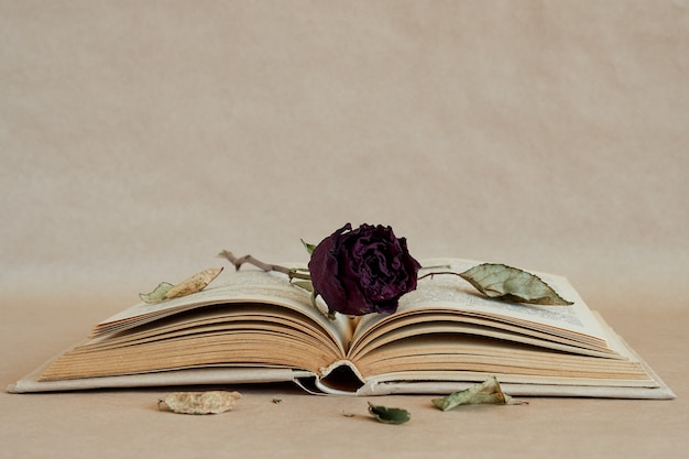 Open book, dry rose flower on paper page on brown paper surface