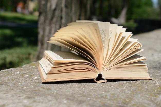 야외 공원에서 책