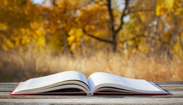 秋の森で本を開きます。