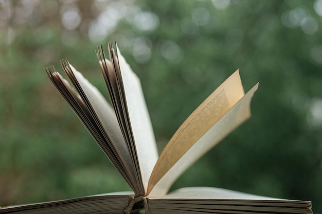 Open book over nature