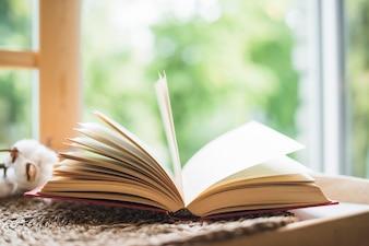 Open book near window at home