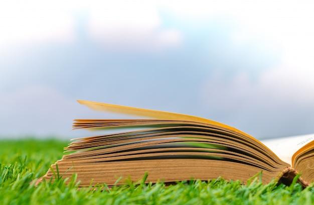 잔디에 펼친 책
