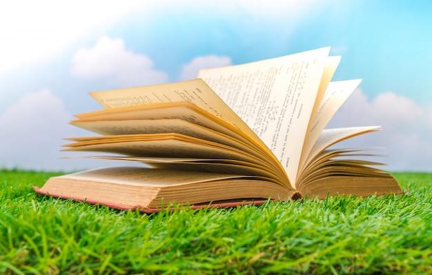 Открытая книга на траве