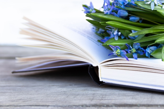 Open book with blue snowdrops on wooden background. pages flipped by the wind.