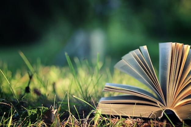 草の上の花で本を開く