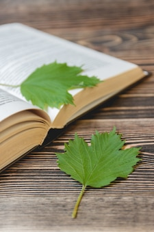 Open book on wooden desk with autumn leaves close up.